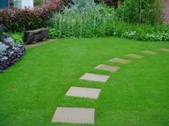 Oly360 Garden